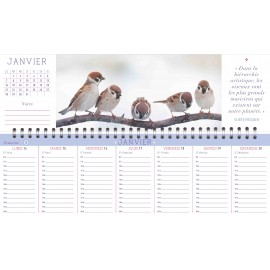 Weekly calendar of majestic nature 2019
