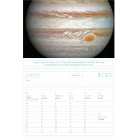 Panoramic calendar Lovely cats 2018