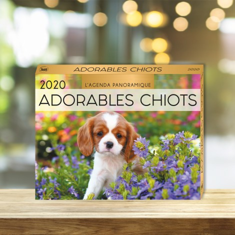 Agenda panoramique Adorables chiots 2020