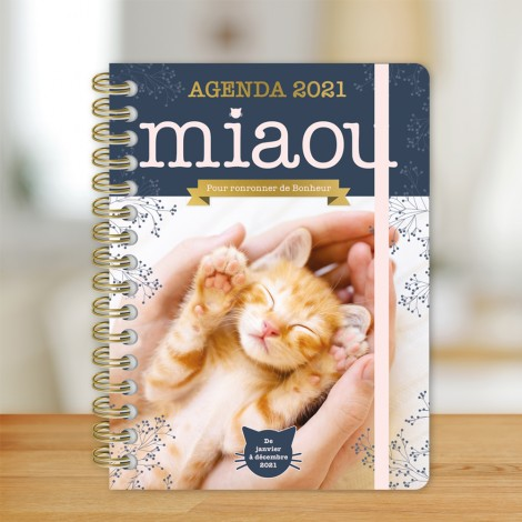 The Miaou 2021 agenda - To purr with happiness