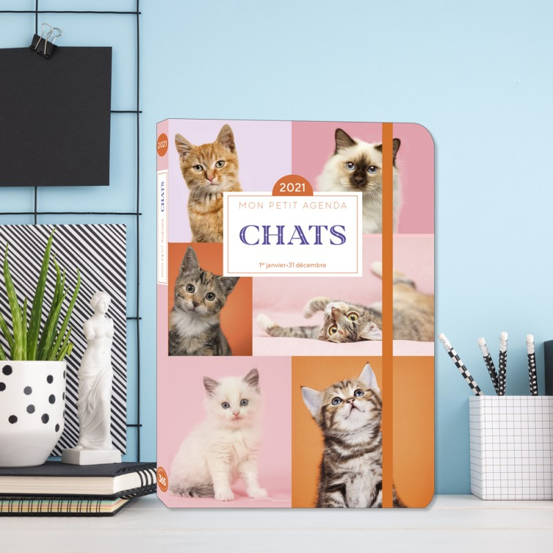 My little diary Cats 2017