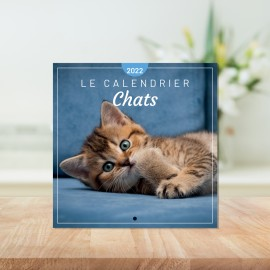 Le calendrier Chats 2022